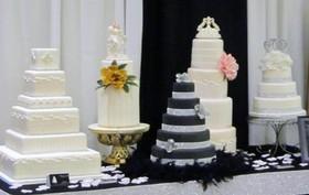 Eleganza Cakes - Faux Wedding Cake Rental