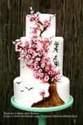 Card_premium_japanese-cherry-blossom-cake-spring-036