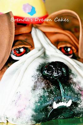 Medium_bulldog-nose-watermark