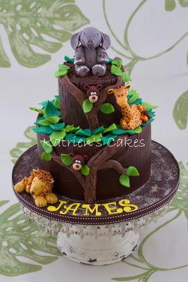 Medium_safari-cake