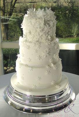 Medium_snowflake-cake