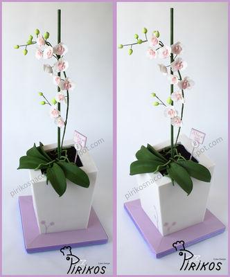 Medium_orchid-cake-5