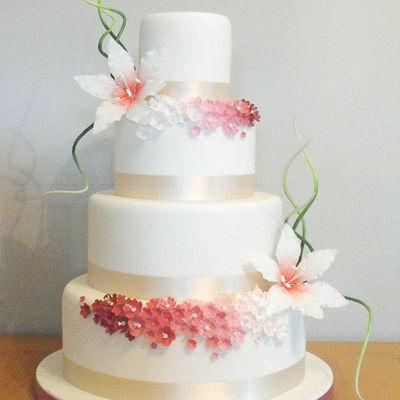 Medium_cake-central-1